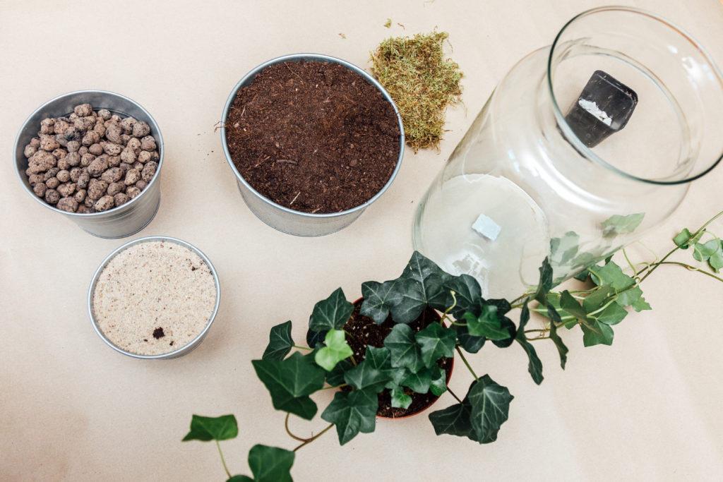 Jak zrobić las w słoiku, potrzebne materiały