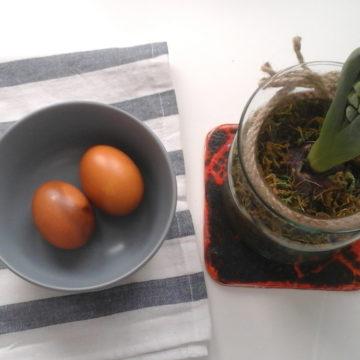 Ekologiczny barwnik do jajek na Wielkanoc – jak go zrobić krok po kroku