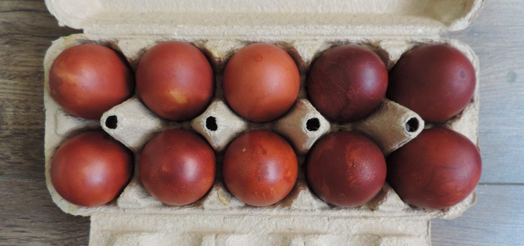 Ekologiczny barwnik do jajek z cebuli